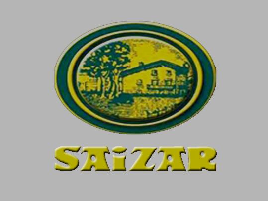 Saizar